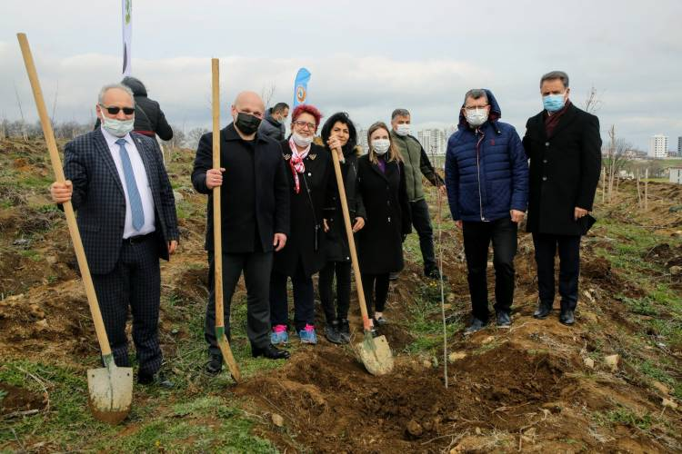 Андрій Білик та Людмила Шимко висадили дерева у м.Самсун